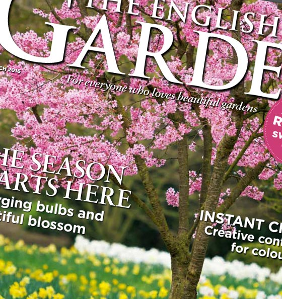 The English Garden Front Cover