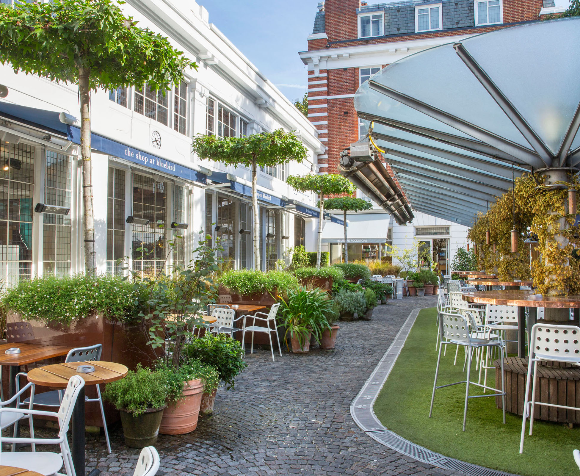 "The Courtyard at Bluebird has been designed to create intimate spaces between the ""parasol' trees and clusters of pots"
