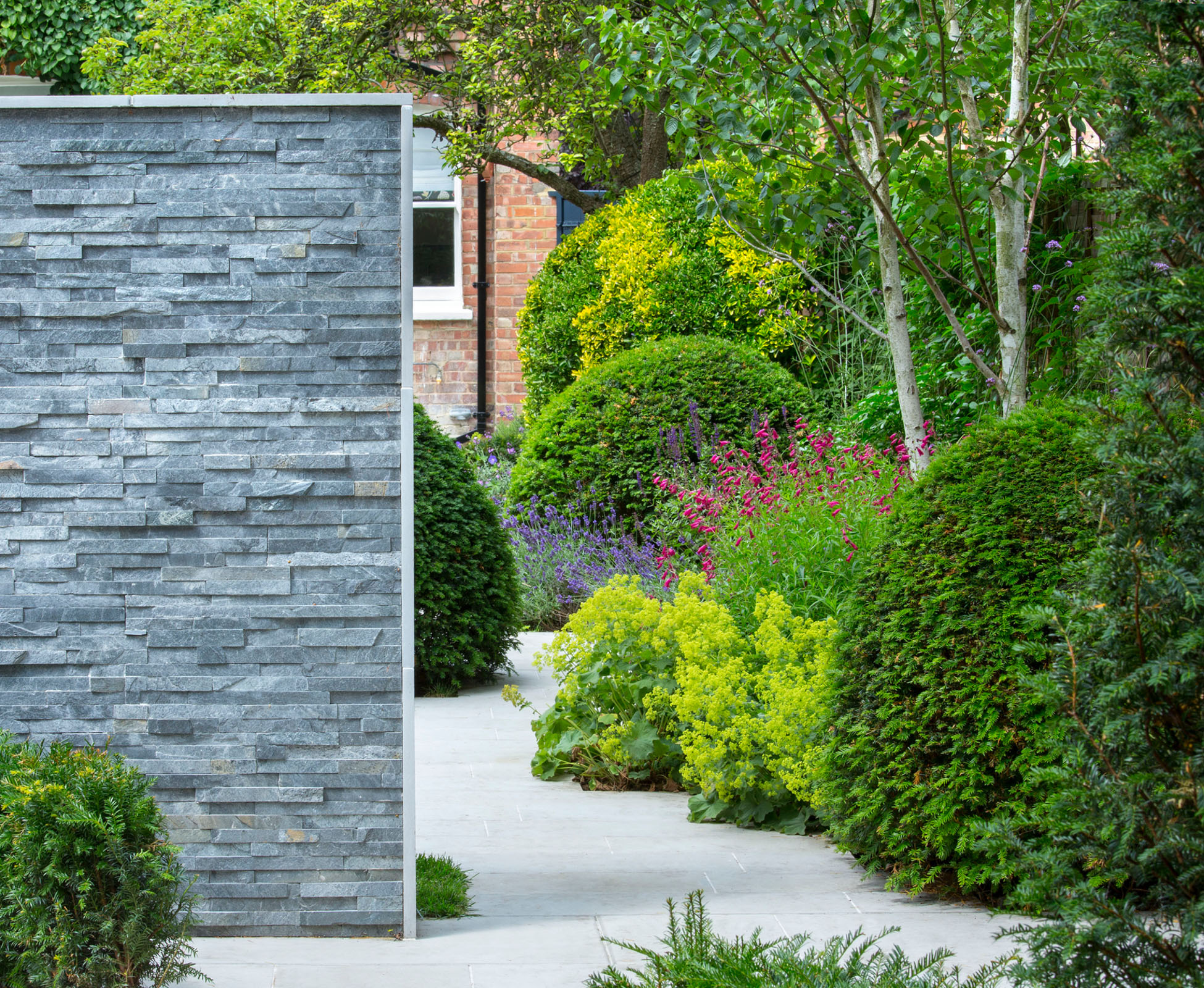 The contemporary grey sawn sandstone, the slate feature wall and the clipped balls are the spine of this Finchley garden.