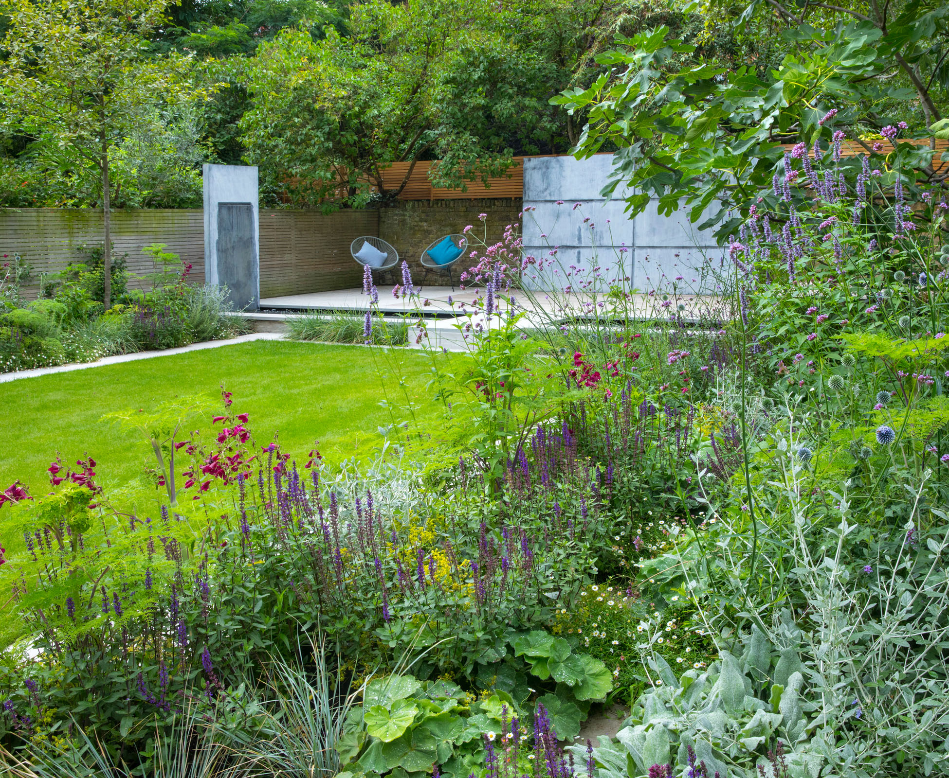 An existing fig tree is underplanted with a mix of herbaceous plants, in the tones of blue, grey, whites and purples. The seasonal flowering offers all year round interest in this Islington garden.