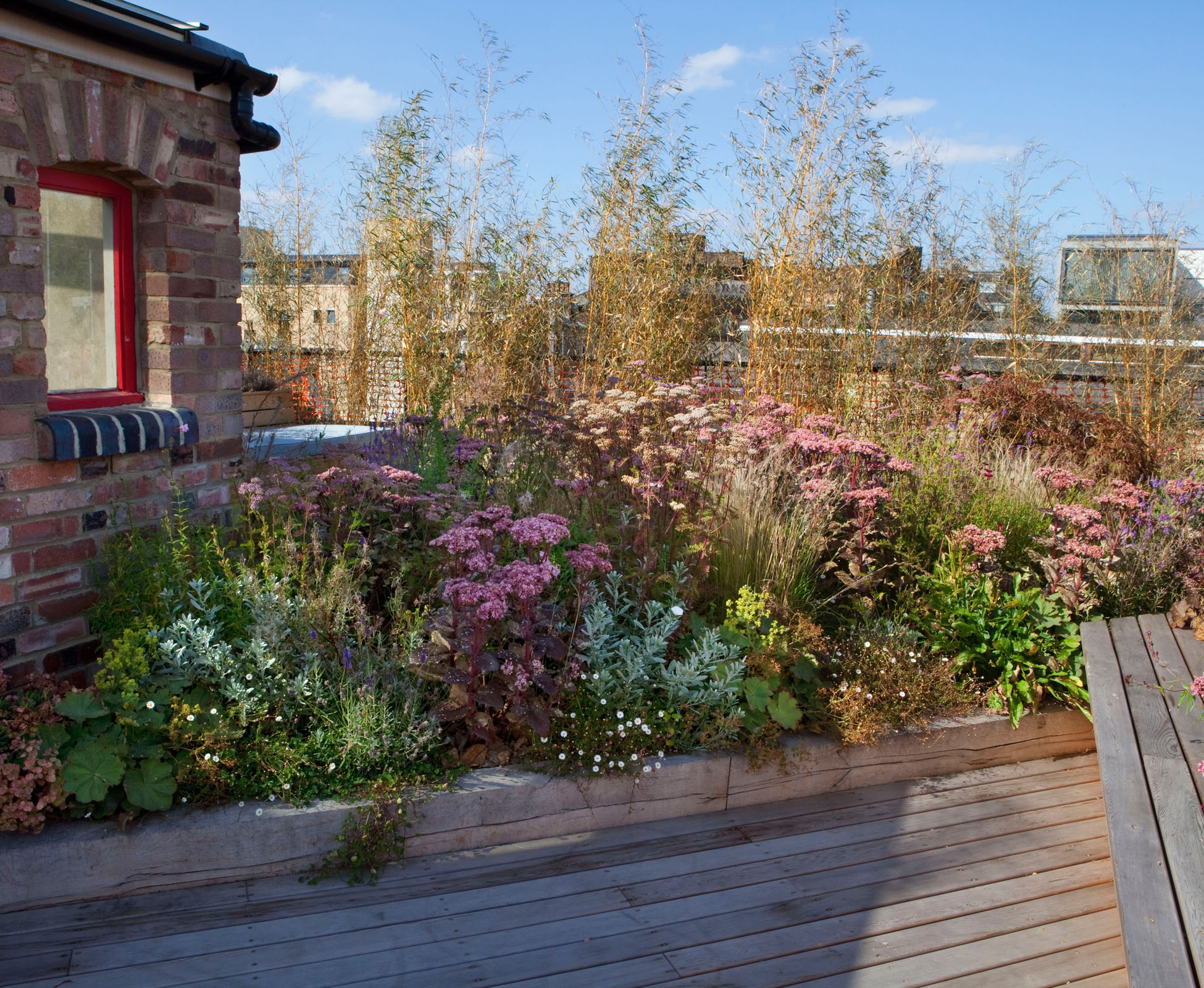 The prairie style planting of this terrace is well suited to the harsh environment of roof gardens